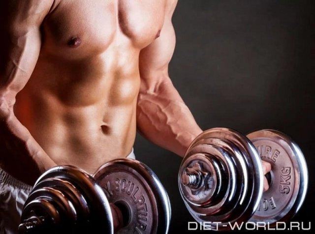 Почему болят мышцы на следующий день?