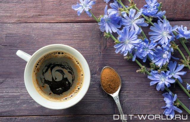 Цикорий. Полезней чем кофе?