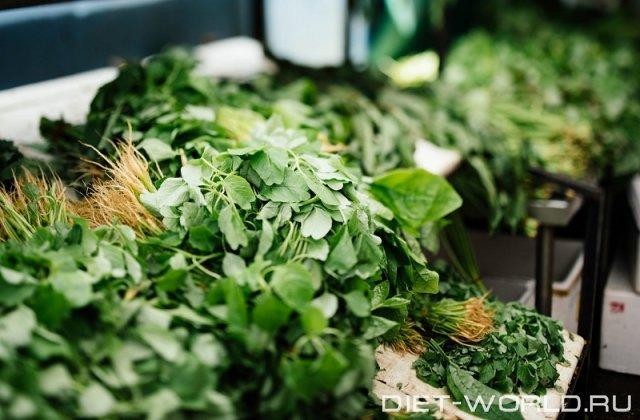 Чем полезна свежая зелень для нашего организма? Почему ее нужно употреблять?